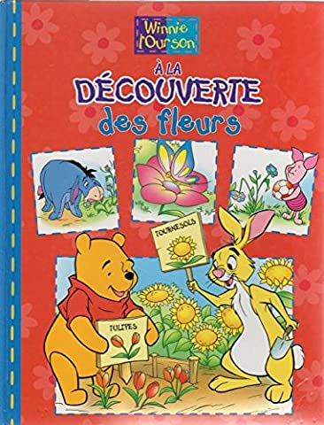 Winnie the Pooh in French