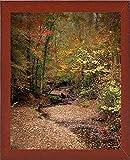 Rahmen USA Creek Bett in autumn-jaijoh140025Print 33,7x 27,3cm by Jai Johnson, 13,25X 10,75, Günstigen Rot Mahagoni Mittel