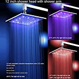 U-Enjoy Zwei Wege Wasserfall Top-Qualität Regen-Dusche-Kopf Der Wand Befestigter Edelstahl Dusche Wasserhahn [12 Zoll Mit Dem Arm]
