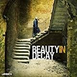 Beauty in Decay: Urbex