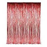 Red Fringe Foil Curtain Decoration 36 X ...