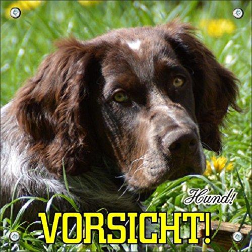 Hundeschild deutscher Wachtelhund - Metallschild in Premiumqualität, 20 x 20 cm