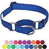 Blueberry Pet Sicherheitstraining Martingale Hundehalsband Klassisch Einfarbig 2 cm M Basic Nylon Hundehalsband Langlebig - Royalblau