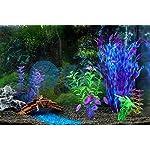 Wicemoon 9.5 * 7 * 5cm Aquarium Fish Tank Decoration Landscaping Aquarium Barrel Fish Turtle Cylinder Elusion Resin… 10