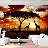 Fototapete Afrika Giraffen Vlies Wand Tapete Wohnzimmer Schlafzimmer Büro Flur Dekoration Wandbilder XXL Moderne Wanddeko - 100% MADE IN GERMANY - Runa Tapeten 9110010b