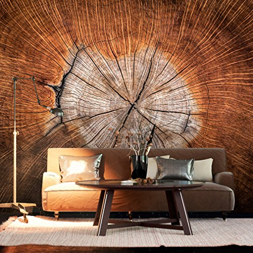 decomonkey | Fototapete 3d effect Holzoptik 400x280 cm XXL | Design Tapete | Fototapeten | Tapeten | Wandtapete | moderne Wanddeko | Wand Dekoration Schlafzimmer Wohnzimmer | FOB0049a84XL