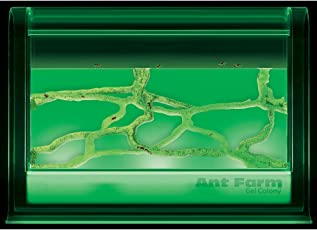Uncle Milton Light Up Ant Farm Gel Colony, Green