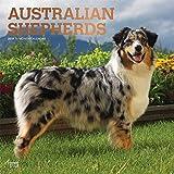 Australian Shepherds - Australische Schäferhunde 2019 - 18-Monatskalender mit freier DogDays-App (Wall-Kalender)