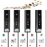 Autocollants pour piano couleur pour enfants débutants 49/54/61/88 pour clés Aide les débutants à savoir où sont les clés et