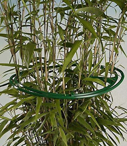 piante-arbusti-supporto-per-anelli-6-pz