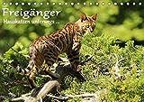 Freigänger - Hauskatzen unterwegs (Tischkalender 2018 DIN A5 quer): Hauskatzen in freier Natur (Monatskalender, 14 Seiten ) (CALVENDO Tiere)