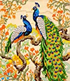 #8: Anchor Stitch Kit-Feathered Beauties