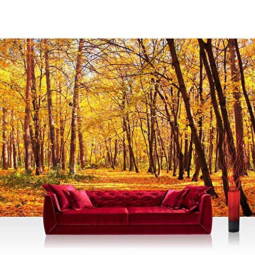 papel-pintado-fotografico-350-x-245-cm-premium-plus-papel-pintado-fotografico-pared-de-pintado-de-au