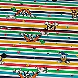 Baumwolljersey Lizenzstoff Disney Family Streifen bunt