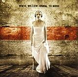 Songtexte von White Willow - Signal to Noise