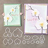 Teenxful Bluelans Coupe Dies Fleur d'orchidée Pochoir de gaufrage Métal Modèle de moule pour DIY Album de scrapbooking papier Fabrication de cartes Art Craft Decor
