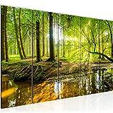 Schilderijen Bos Landschap - Wanddecor 200 x 80 cm - op Vlies Canvas XXL - Formaat Schilderij Woonkamer Decoratie Kunstdruk Wall Art 5 delige - Made in Germany - 611755a