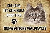 Schatzmix Ein Haus ist Kein Heim ohne Eine Norwegische waldkatze Katze blechschild