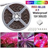 Tira LED Luz, Sparke 5050 5m Lámparas de crecimiento LED, Tira LED Iluminación plantaspara Interior Invernadero Hydroponic Planta Crecimiento