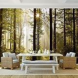 XXL Fototapete Wald 352 x 250 cm aus Vlies- Wandtapete - Vlies 100% MADE IN GERMANY !!! Runa Tapete 9010011a