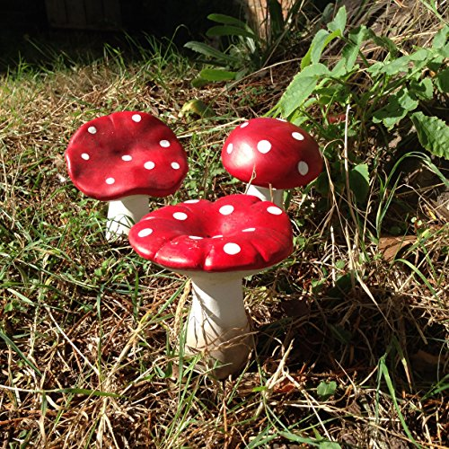 Aproximadas: 9cm de alto estas setas/Seta venenosa son ideales para cualquier jardín de hadas. fabricada en resina y resistencia a la intemperie. ideal para cualquier jardín.