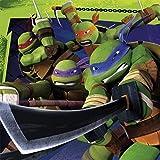 Amscan 33cm Teenage Mutant Ninja Turtles 20-Luncheon Napkins