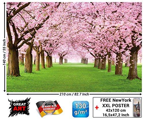 GREAT ART Fototapete - Kirschblüten Wandbild - Dekoration Blumen Frühling Garten Pflanzen Walt Park Natur Cherry Tree Kirschblütenbaum Allee Foto-Tapete Wandtapete Fotoposter (210x140 cm) -