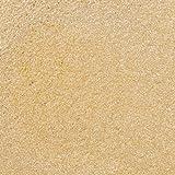 Perla polvere 3 grammi-oro