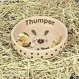 Personalised Rabbit Stitch Small Brown Rabbit Bowl - Personalised - Rabbit Bowls - Pet Gifts