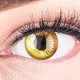 Lentilles couleur cosplay - manga, anime yellow. Pour Halloween, fantaisie, Carnaval + étuis à lentilles de contact I 1 paire