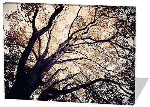 Baum, Gemälde Effekt, schönes und hochwertiges Leinwandbild zum Aufhängen in XXL - 120cm x 80cm, echter Holzrahmen, effektiver Pigmentdruck, modernes Design für Ihr Büro oder Zimmer