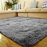 Demiawaking Fluffy Shaggy antidérapant Tapis de sol Zone Tapis Maison Chambre à coucher, Gris argenté, Silver gray