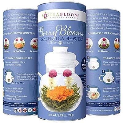 Boules de thé vert aux baies rouges Teabloom en cartouche cadeau de 12 fleurs – 4 variétés de thé sculpté aux baies rouges : canneberge, myrtille, baie d'açaï et fraise + thé vert
