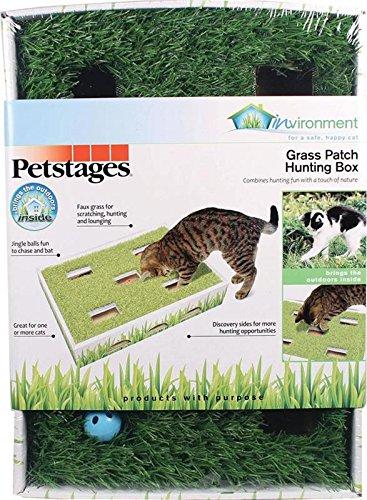 Petstages 708Gras Patch Jagd Box Katze Rest und Spielzeug Play Box (Play-box Katzen Für)