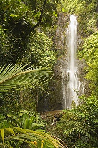 The Poster Corp Ron Dahlquist/Design Pics - USA Hawaii Maui Kipahulu Wailua Falls Surrounded by Foliage; Hana Coast Photo Print (55,88 x 86,36 cm)