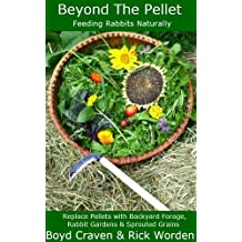 Beyond The Pellet (The Urban Rabbit Project Book 2) (English Edition)