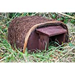 leisure traders outdoor garden hedgehog house - provides shelter and sanctuary Leisure Traders Outdoor Garden Hedgehog House – Provides Shelter And Sanctuary 61yyuz7RLaL