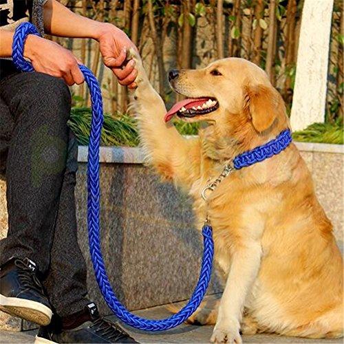 Heavy Duty Hund Geflochten Halsband–Gear Martingal verstellbar choke-style Hund Halsband –, die Solide handgefertigt Seil Leine mit Bonus Pet Training eBook–Preis XES (Ausbildung Kragen Choke)
