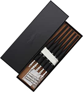 5 pcs rouge Sipliv en plastique professionnel stylo plume manga gothic dip avec kit de stylo dessin 5 plumes calligraphie manga