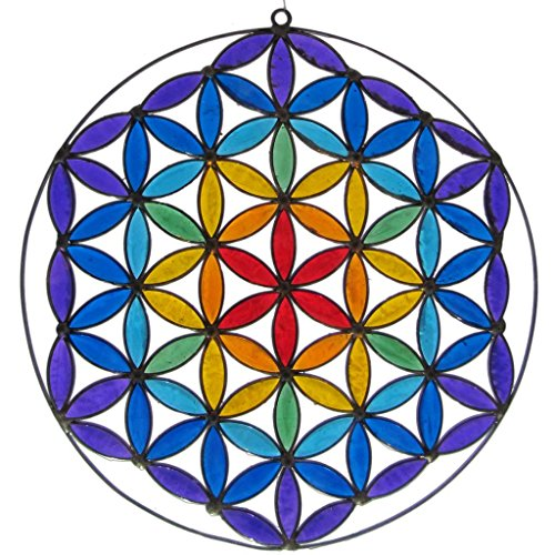 PANASIAM Suncatcher, Fensterschmuck, Lichtbrecher, Flower of Life die Lebensblume in den 7 Chakrafarben.