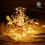 #6: Beauty Lights 3M 30LED Warm White Copper String Light 3 AA Battery Operated Decorative String Fairy Lights