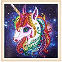 TianMaiGeLun 5d Diamond Painting Kits New Special Shaped Diamond Embroider DIY Kits for Kids Adults Paint by Number Kits Cross Stitch Craft Kit Painting by Diamonds (8019)