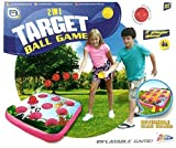 2 in 1 Target Ball Game Indoor & Outdoor Family Fun