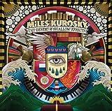 Songtexte von Miles Kurosky - The Desert of Shallow Effects