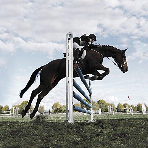 Apple iPhone 5s Housse étui coque protection Cheval Équitation Faire du cheval Étui en cuir gris