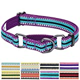 Blueberry Pet 2,5cm L 3M Reflektierendes Bunt Gestreiftes Violett und Himmelblaue Sicherheitstraining Martingale Hundehalsband für Große Hunde