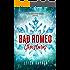 Bad Romeo Christmas: A Starcrossed Anthology