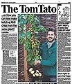 BALDUR-Garten TomTato® 1 Pflanze Tomaten und Kartoffeln an einer Pflanze Tomoffel Tomatoffel von Baldur-Garten auf Du und dein Garten