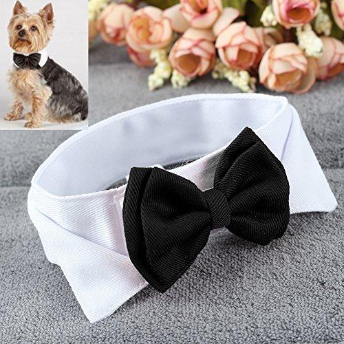 Pinzhi Hunde Katze Haustier Halsband Fliege Schleife für Party (Weiß&Schwarz) - 6