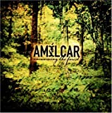 Vacuuming the Forest by Amilcar (2005-05-03)